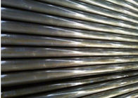 "Chemical Processing Seamless Stainless Steel Tubing 347H / UNS S34709 / 1.4912 DN3"" STD"